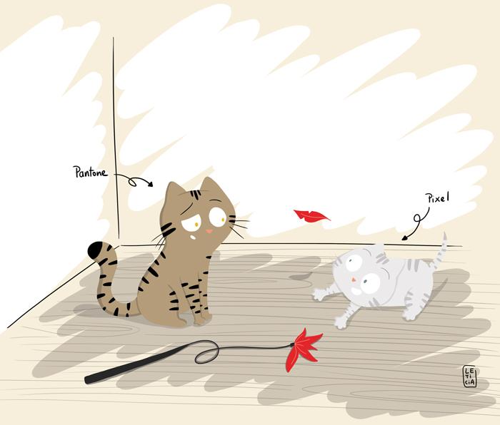 nouveau chaton, arrivée d'un nouveau chat, Pantone et Pixel